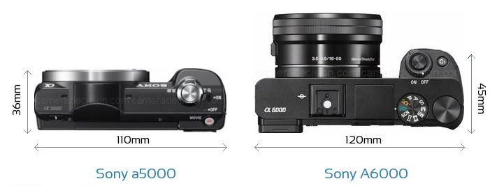 Sony A6000 vs A5000.JPG