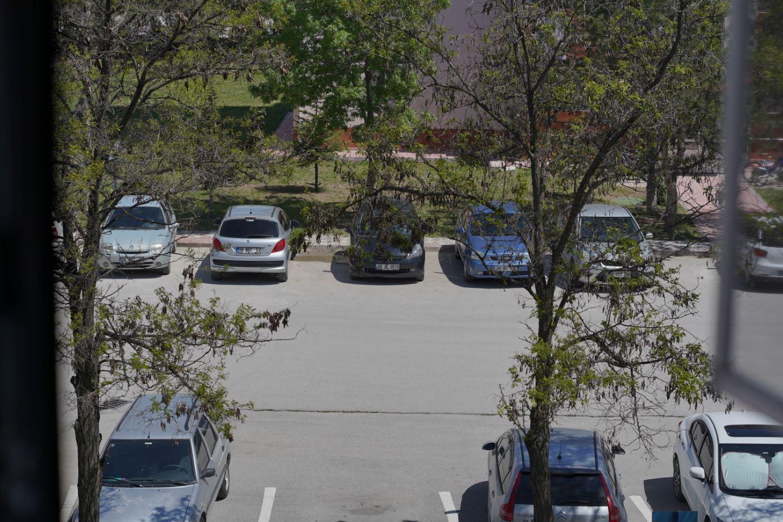 Sony-A7-III-Clear-Image-Zoom-Test.JPG