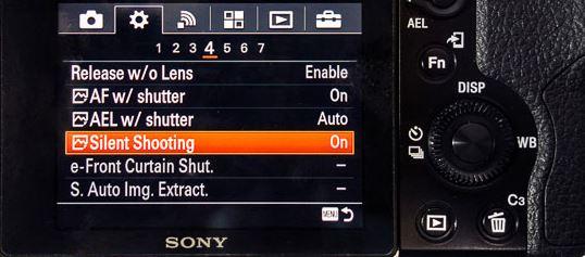 sony A7 III silent shutter.JPG