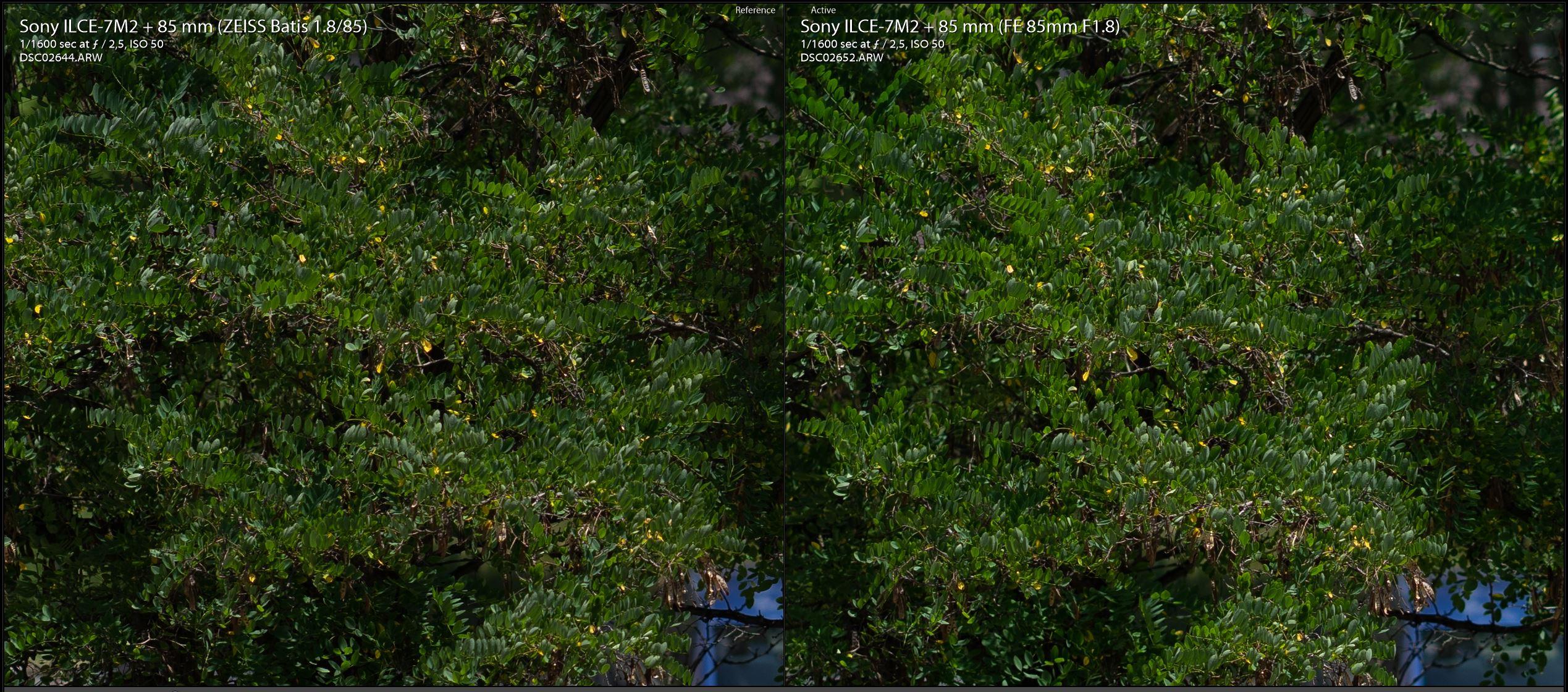 Zeiss-Batis-85mm-vs-Sony-FE-85mm-F2.5-yesil.JPG
