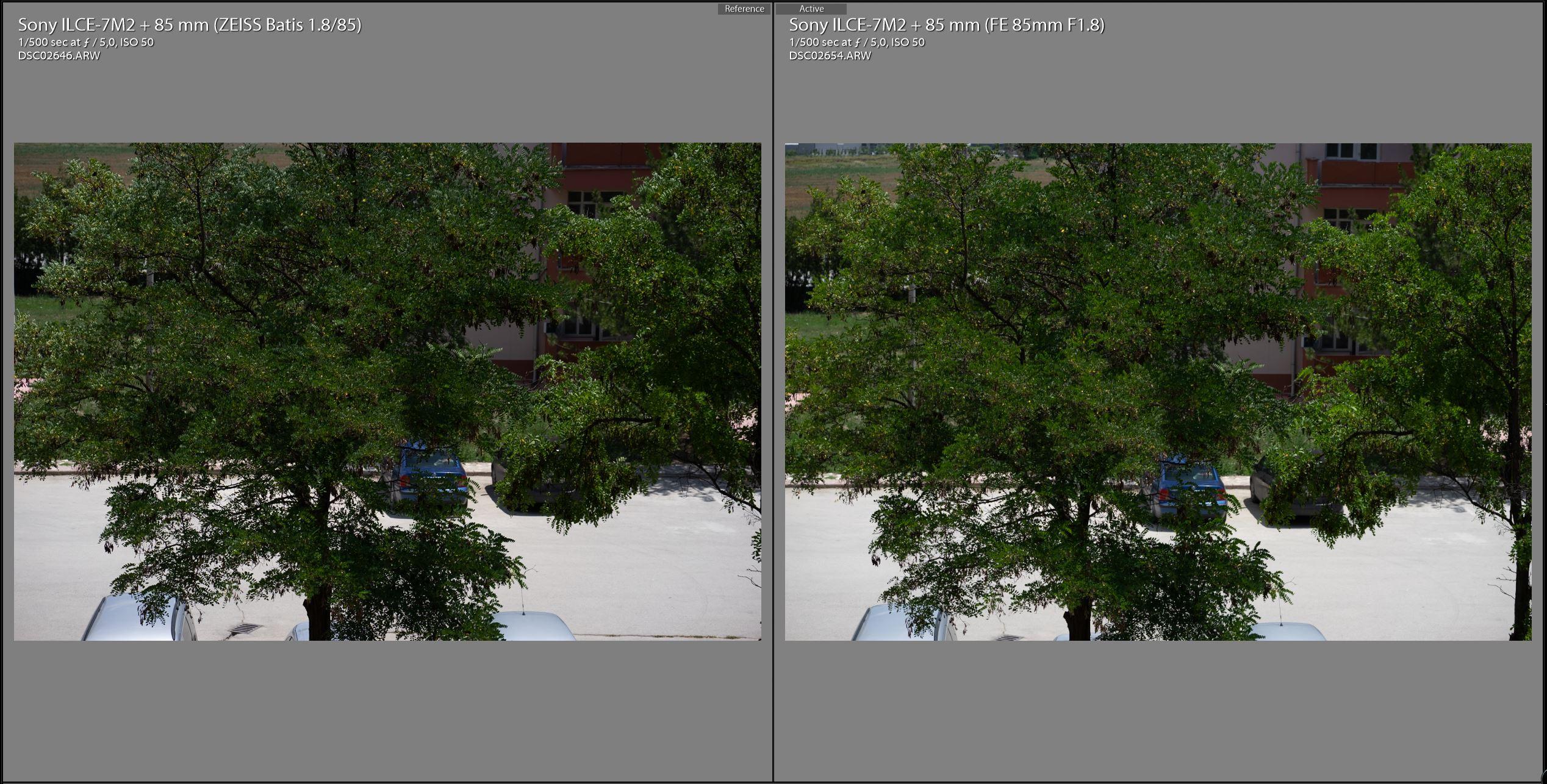 Zeiss-Batis-85mm-vs-Sony-FE-85mm-F5-yesil.JPG