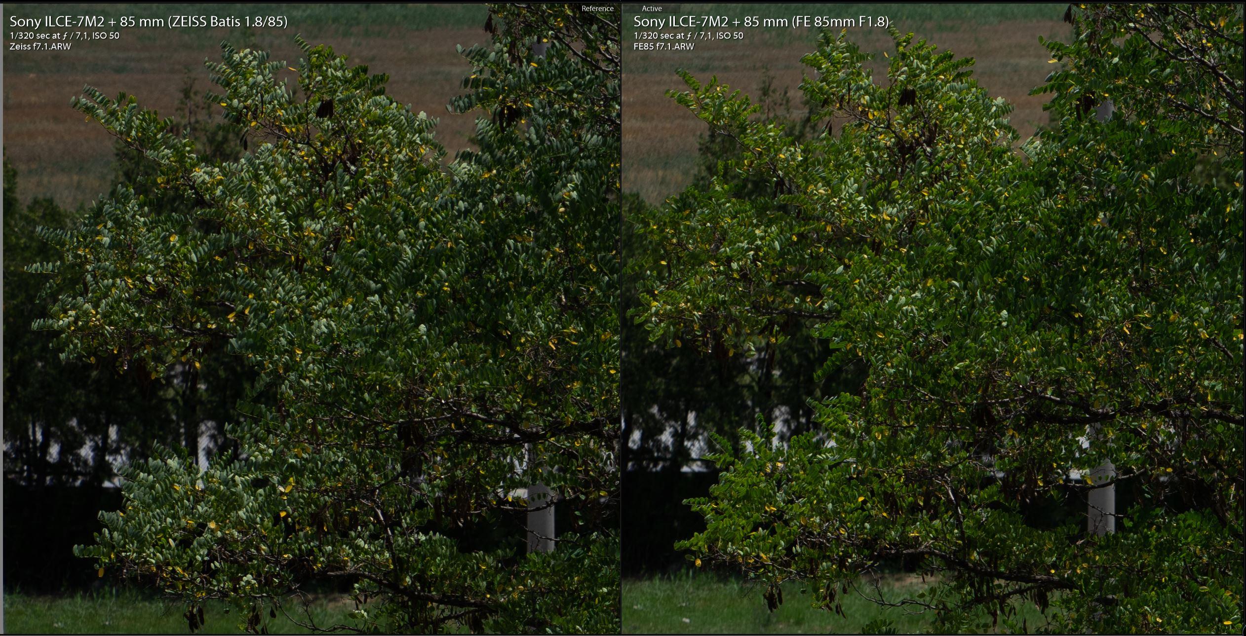 Zeiss-Batis-85mm-vs-Sony-FE-85mm-F7.1-yesil.JPG